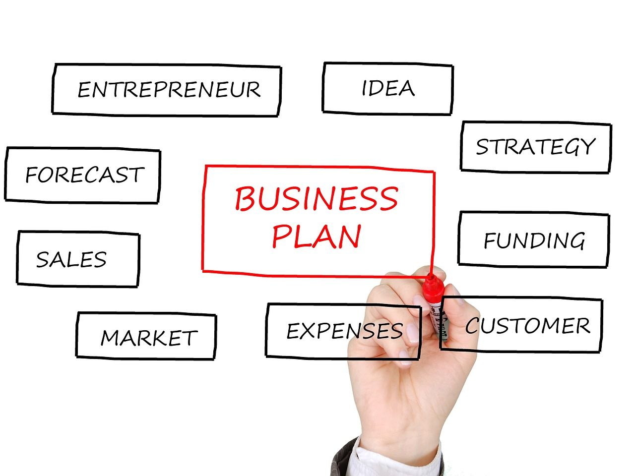Need a business plan writer